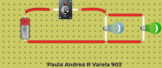 Paula Andrea Rodríguez Varela 903