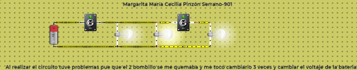 Margarita María Cecilia Pinzón Serrano- 901